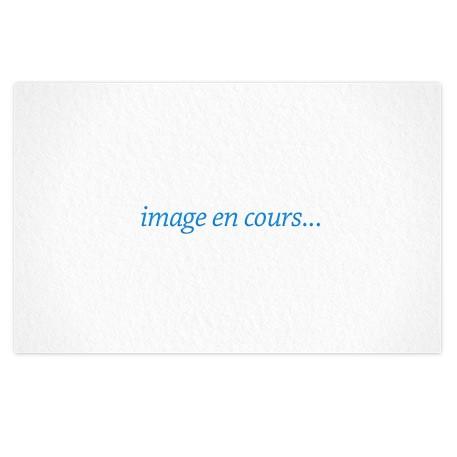 "Magnet ""Fondation Berliet"""